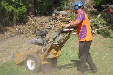 Stump Grinding Gold Coast
