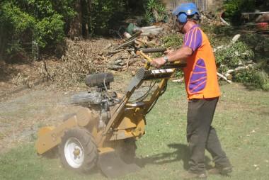 Stump Grinding Gold Coast